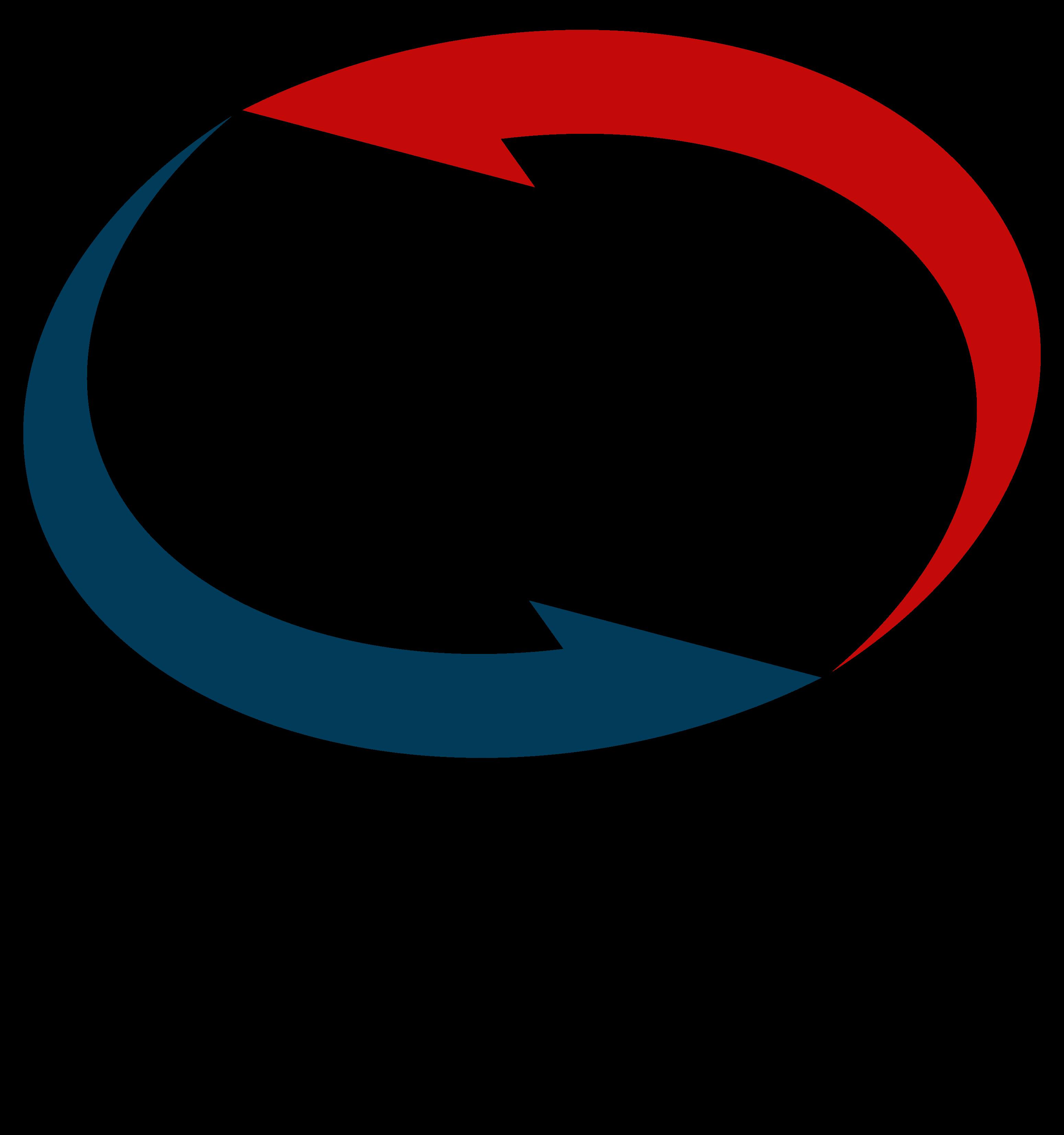 Drive In Mot Service Logo