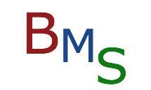 B M S Garage Logo