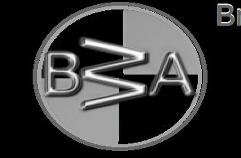 Bricket Wood Auto Services Ltd Logo