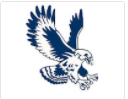 Falcon Motors Logo